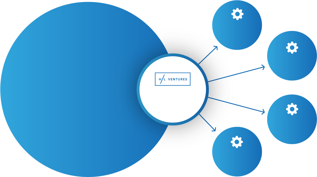 H/L Ventures Organization